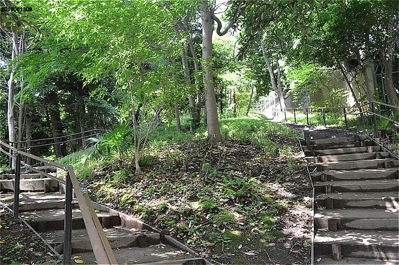 高輪森の公園