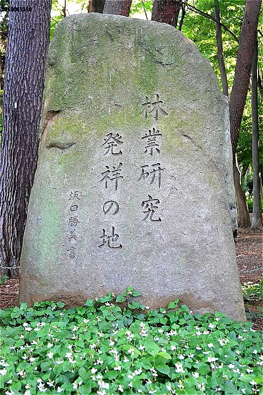 林試の森公園 記念碑