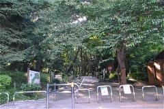 林試の森公園 もちのき門