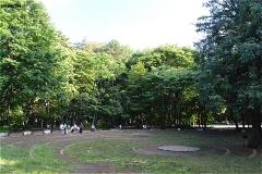 林試の森公園 出合いの広場