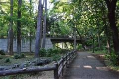 林試の森公園 せせらぎ橋