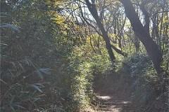 「六道山」方向へ