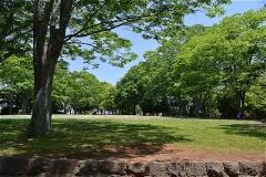 橋賀台公園。入口から左手の階段を上ると広場。紅葉がきれい。