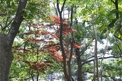 橋賀台公園