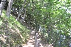 赤坂公園:池に沿った道。途中の分岐を左に登っていく