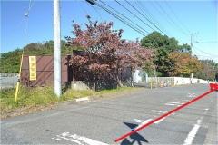 白い柵に沿ってすすむと、菅北浦緑地公園の入口