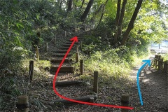 女子美の森:右は住宅に沿った道、左は森のなかの道