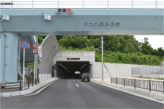 オタカの森歩道橋