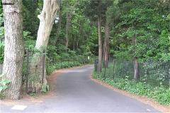 小塚山公園脇の道は通らず、道なりに