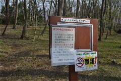 084-清瀬中里緑地保全地域A地区(カタクリ群生)