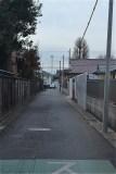 101-甲州街道からつづく稲荷神社の参道