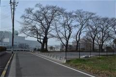 101-前方が府中崖線