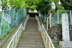 115-稲付城跡の階段