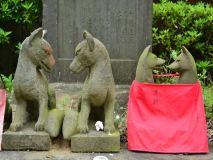 115-赤羽八幡神社の夫婦狐
