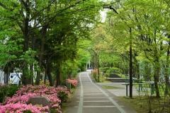115-赤羽緑道公園
