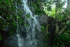115-名主の滝公園「男滝(おだき)」