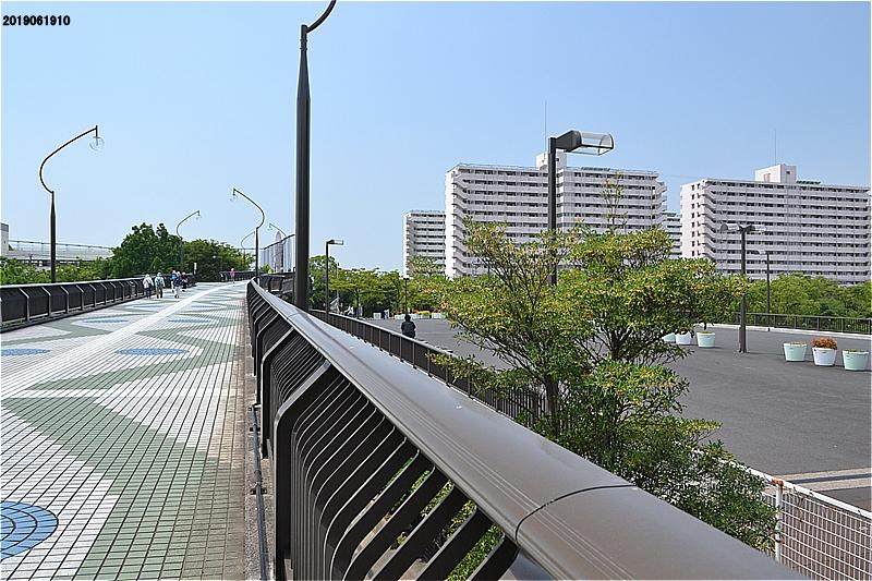 新左近川親水公園 葛西かもめ橋