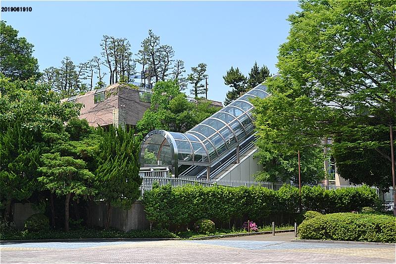 江戸川区臨海球技場へのぼるエスカレータ