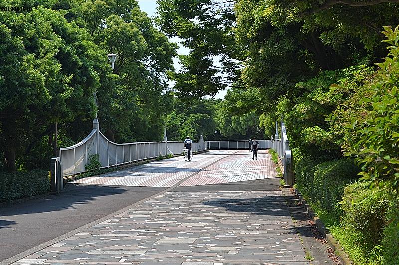 臨海橋(湾岸道路横断橋)入口