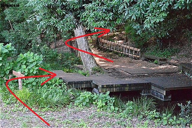 竹林公園・湧水点