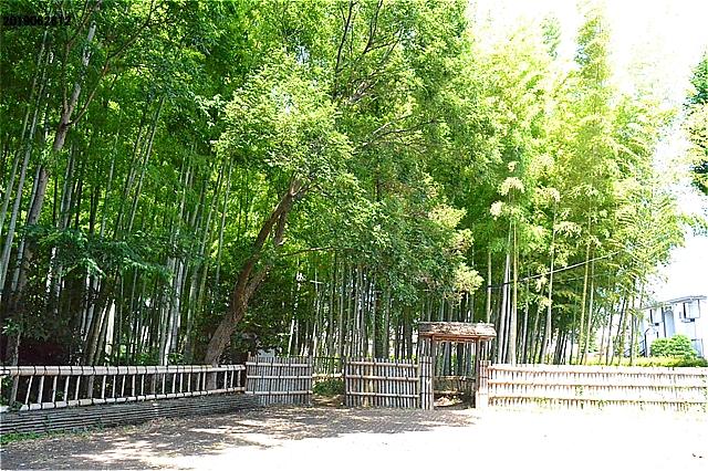 竹林公園・正門