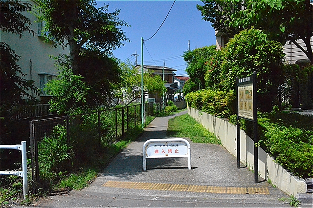 南沢第6緑地入口