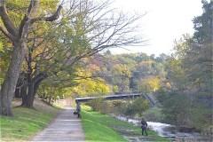 野川公園:わき水広場へ