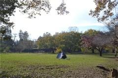 野川公園:わき水広場