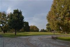 武蔵野の森公園:芝生広場