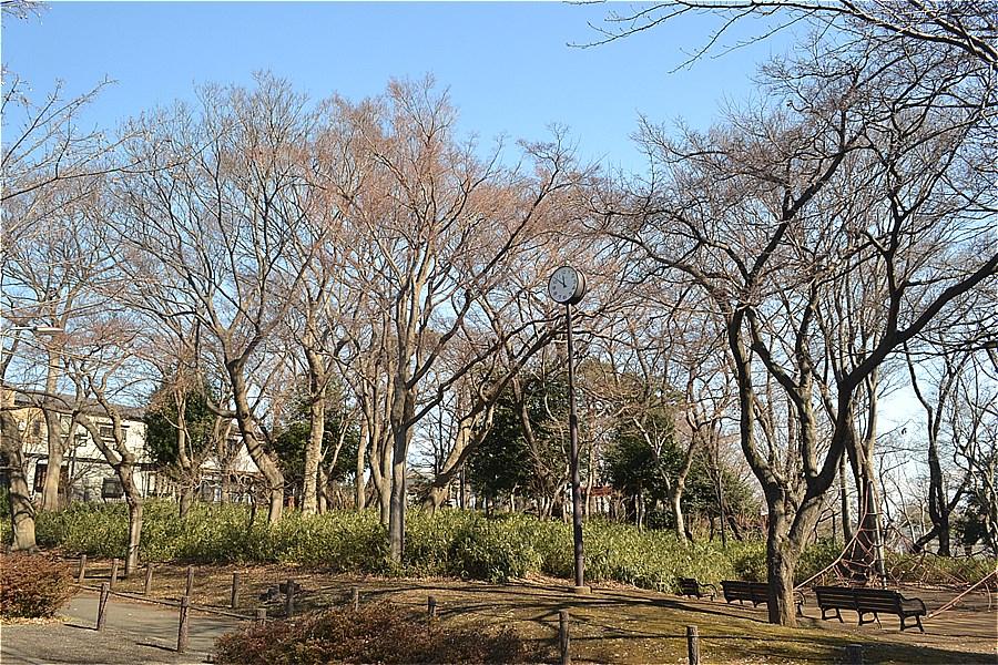 507-もみじ山公園