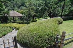 八芳園 庭園