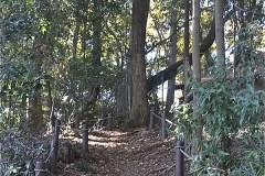 浅間神社へは、西口広場からのぼってくる「富士山階段」もあります