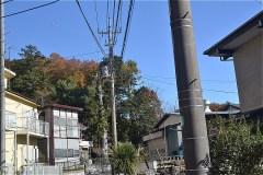 正面の森が、浅間神社参道入口