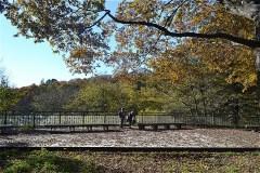 展望デッキ:谷戸の風景が展望でき、小鳥の観察ができる