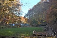 谷戸のきれいな景色:右側の斜面が、カタクリ群生地