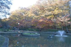 市立野山北公園