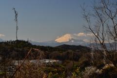 043-金沢市民の森からの眺望