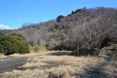 043横浜自然観察の森