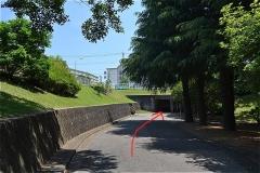 橋賀台公園。すすむ