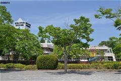 郷部公園。むこうは、聖徳大学附属成田幼稚園