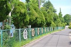 成田市立向台小学校