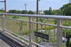中台8号橋