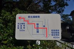 記した赤線のように、公園内をすすむ