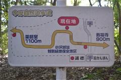 小澤城址跡:浅間山