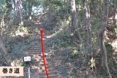 小沢天神山城跡:右はピーク、左は広場