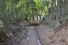 小澤城址の道