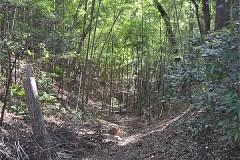 小澤城址跡:空堀