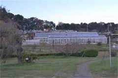 川崎市農業技術支援センター:温室