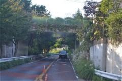 日本テレビ生田スタジオ先をくぐって、左へ