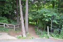 小塚山公園に沿った小径を行く